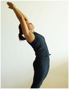 surya namaskar yoga in palakkad  surya namaskar classes